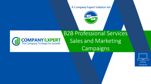 B2B Professional Services Sales & Marketing Campaigns
